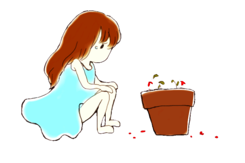 枯れたお花