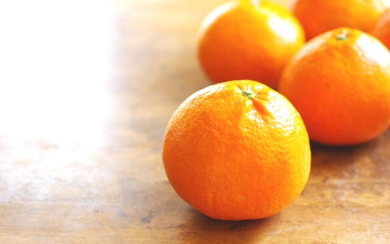 伊予柑 柑橘系